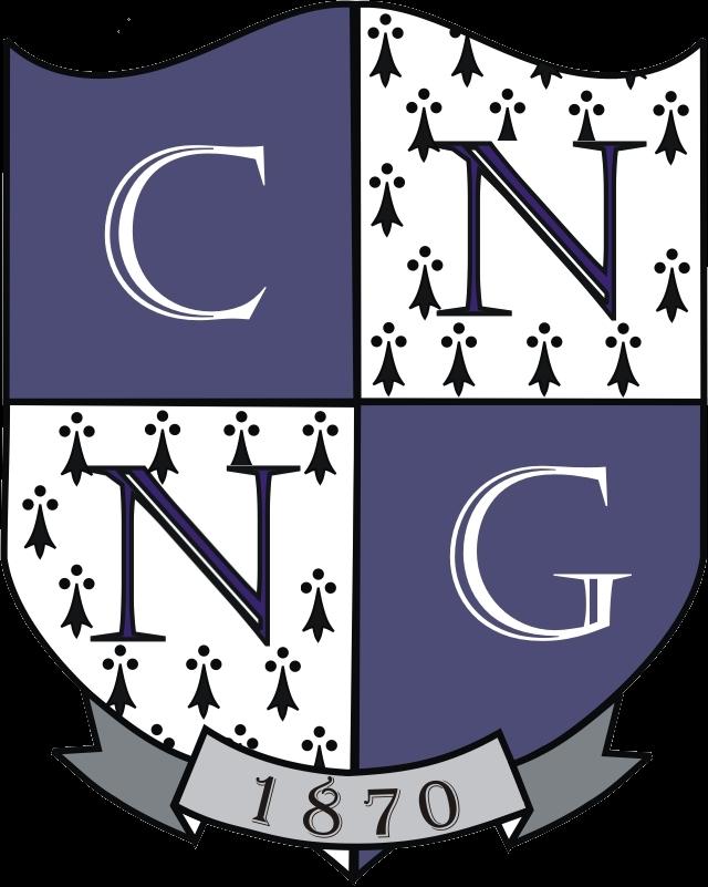 """CN """"Nicu Gane"""" Fălticeni"""